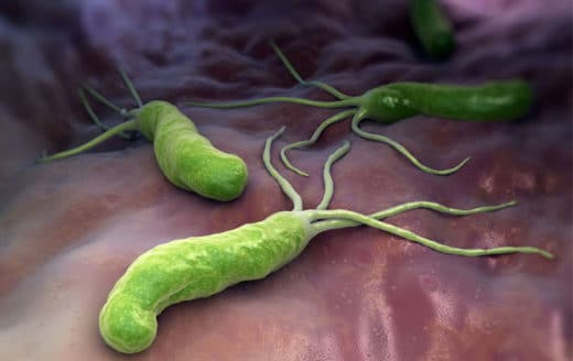 Helicobacter Pylori Traitement Naturel