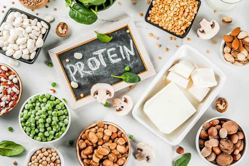 Consommer des proteines Bio