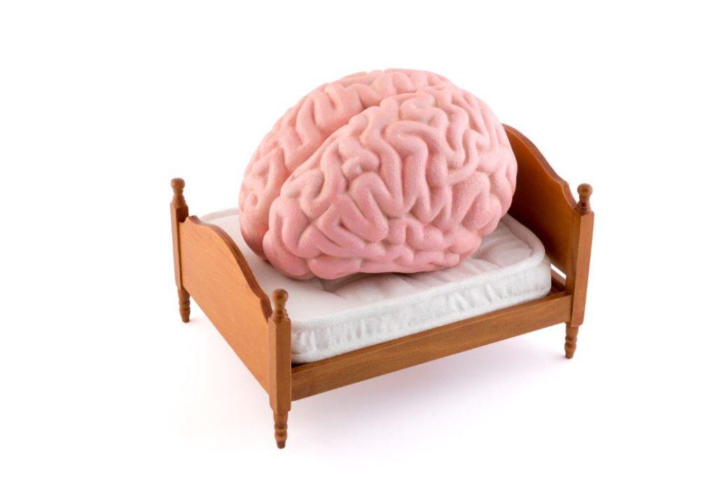 Rêve Signification Cerveau