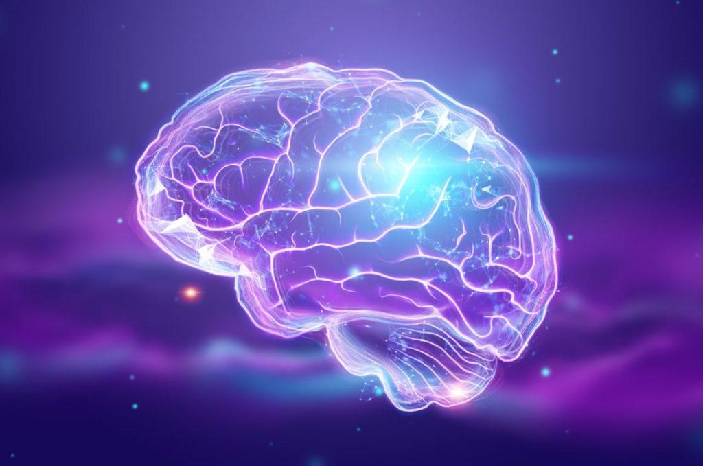Cerveau Zone Frontale Ouverture Esprit