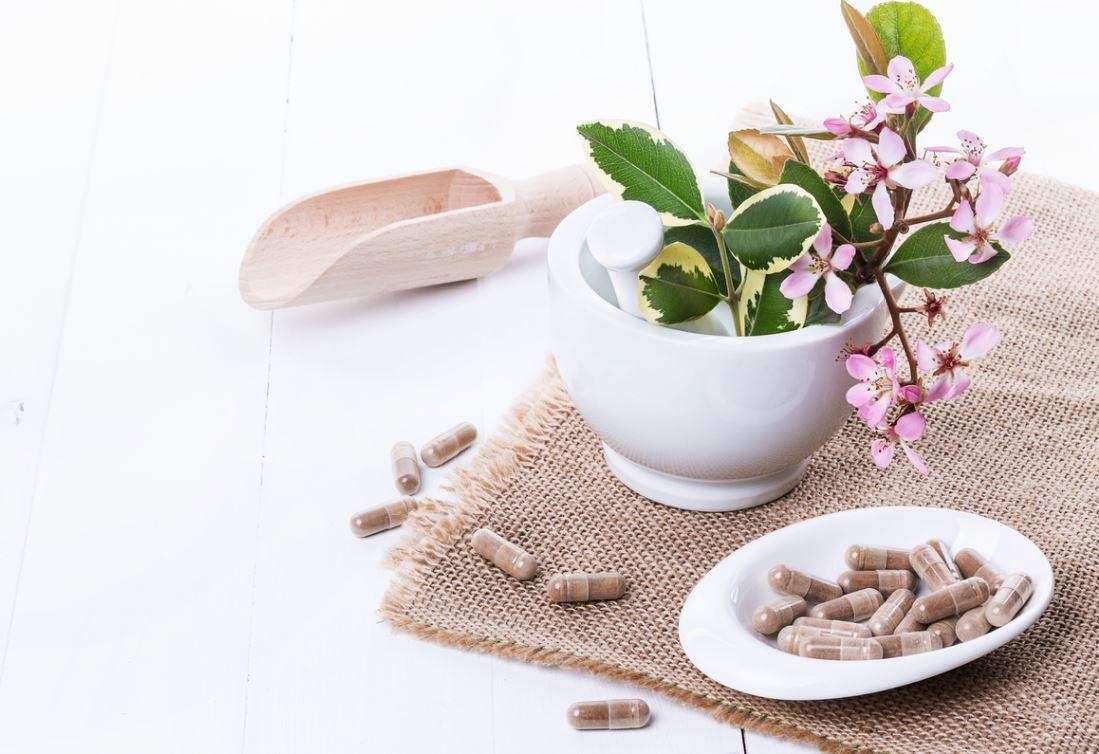 Plantes Adaptogenes Medecine Douce