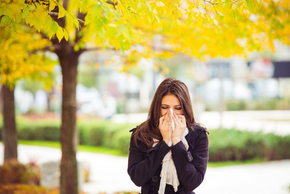 Allergie De Saison
