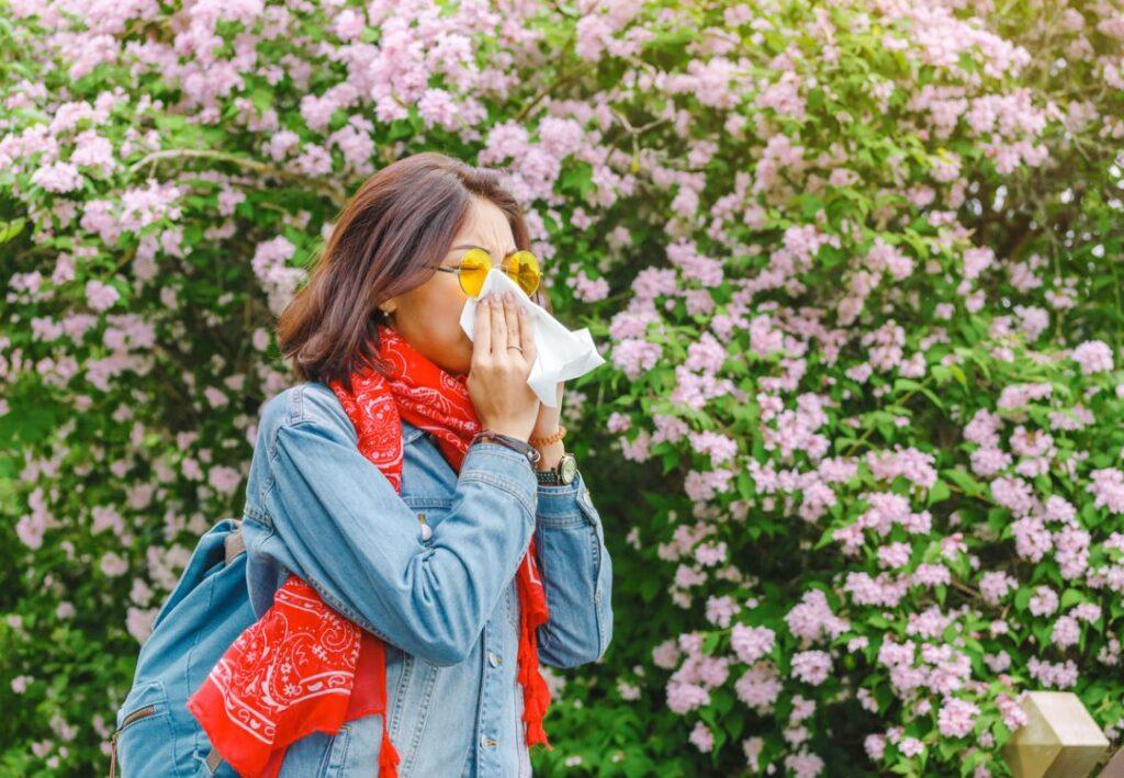 Allergies Respiratoires Prise En Charge