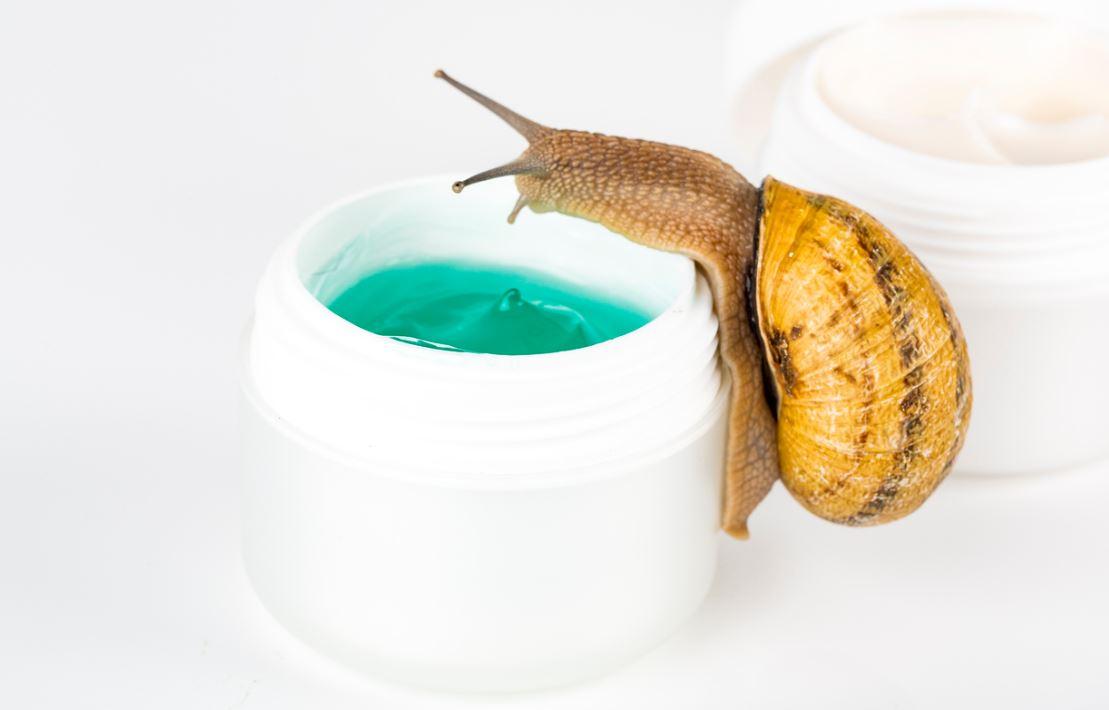 Bienfaits Bave Escargot Cosmetiques