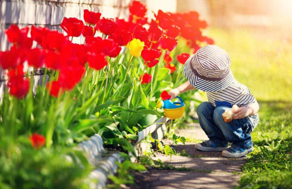 Jardinage Activité Enfants