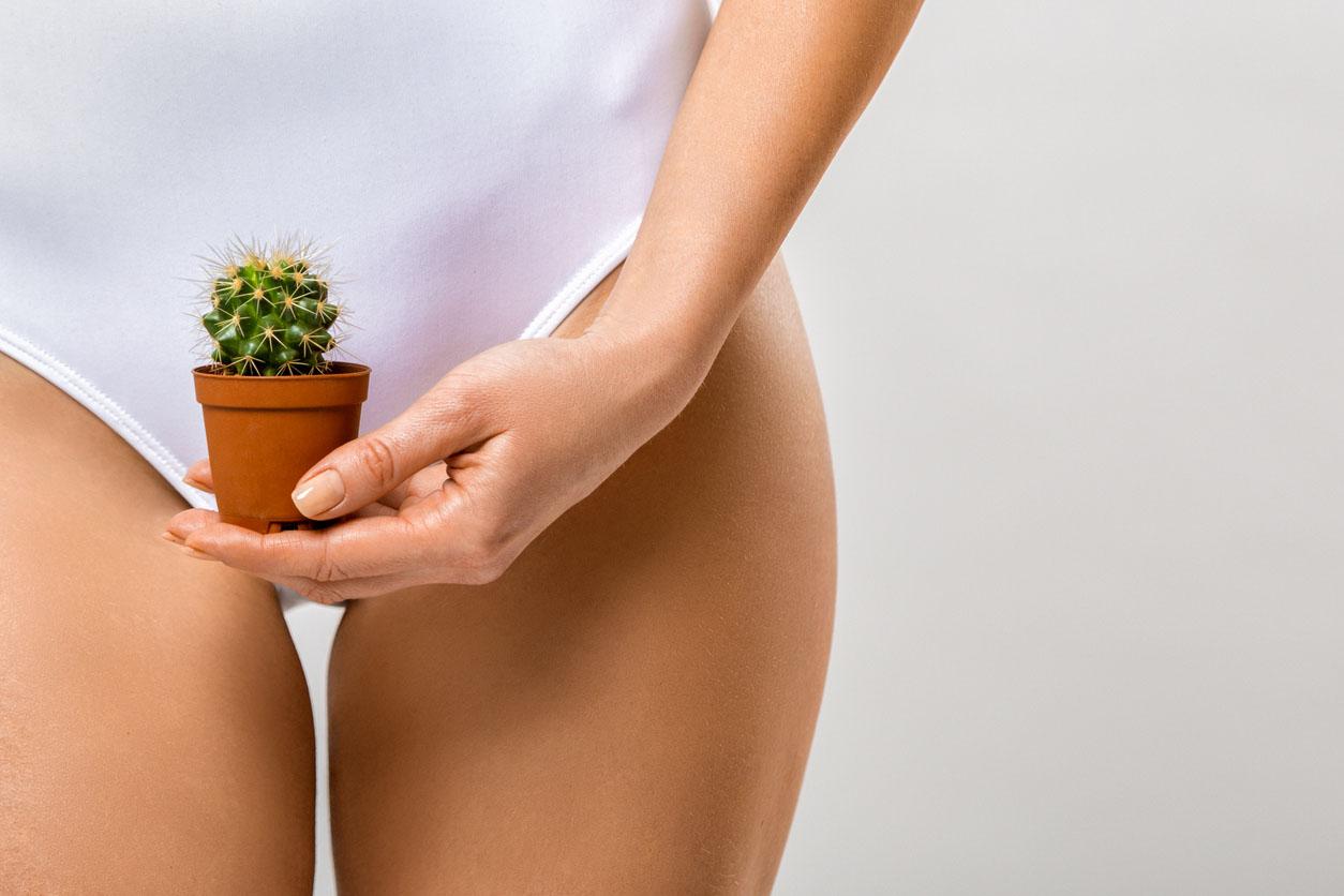 Epilation de la zone bikini. Une femme tenant un cactus dans sa main