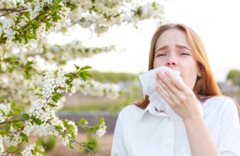 Allergie Pollen Rhume