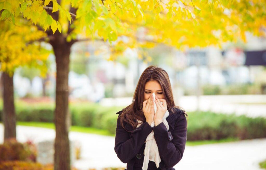 Rhume Des Foins Allergie Pollen