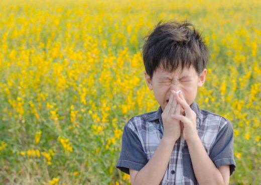 Enfant Allergie Pollen